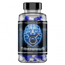 Тестобустер Regeneration Pharm Tribulus 120 капс